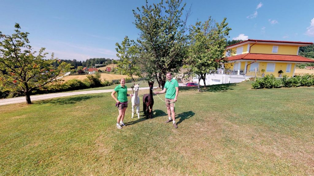 Familie Ponsold mit zwei Alpakas 360 Grad Panoramabild